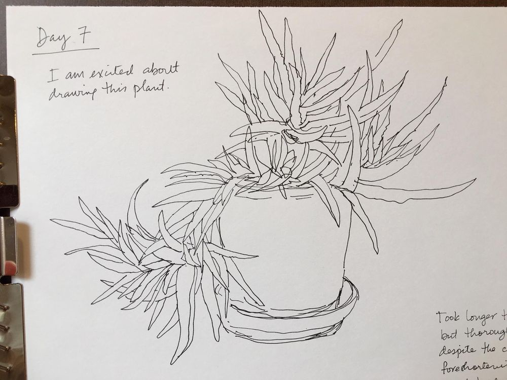 14 Days of Drawing - image 7 - student project