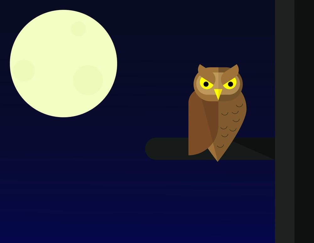 Adobe illustrator - image 3 - student project