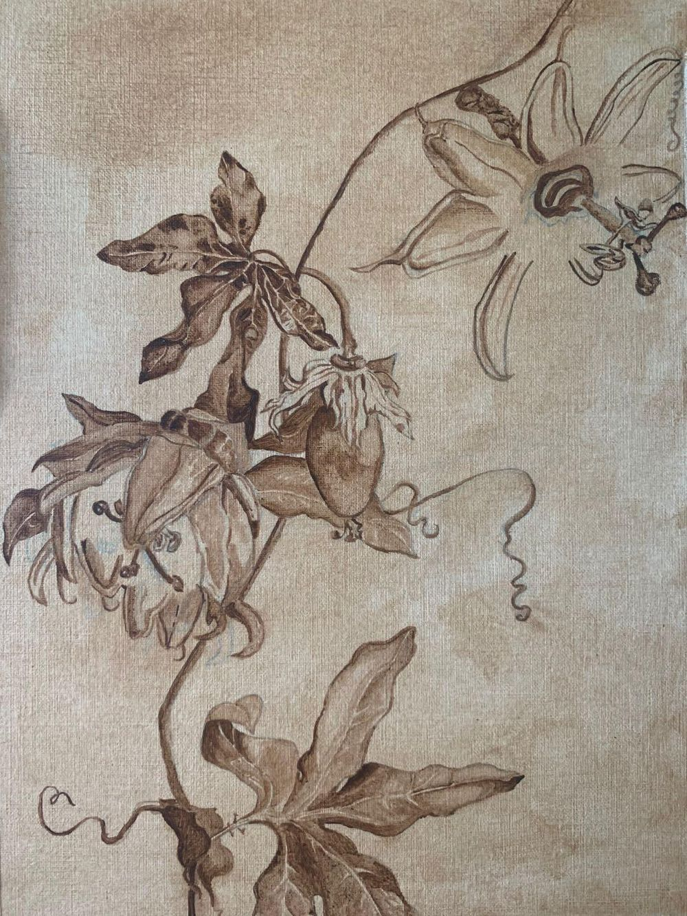 Antique underpainting of passiflora - image 1 - student project