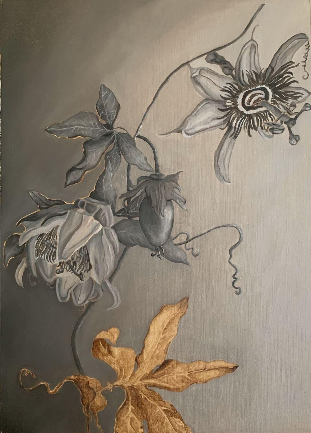 Passiflora Grisaille - image 1 - student project