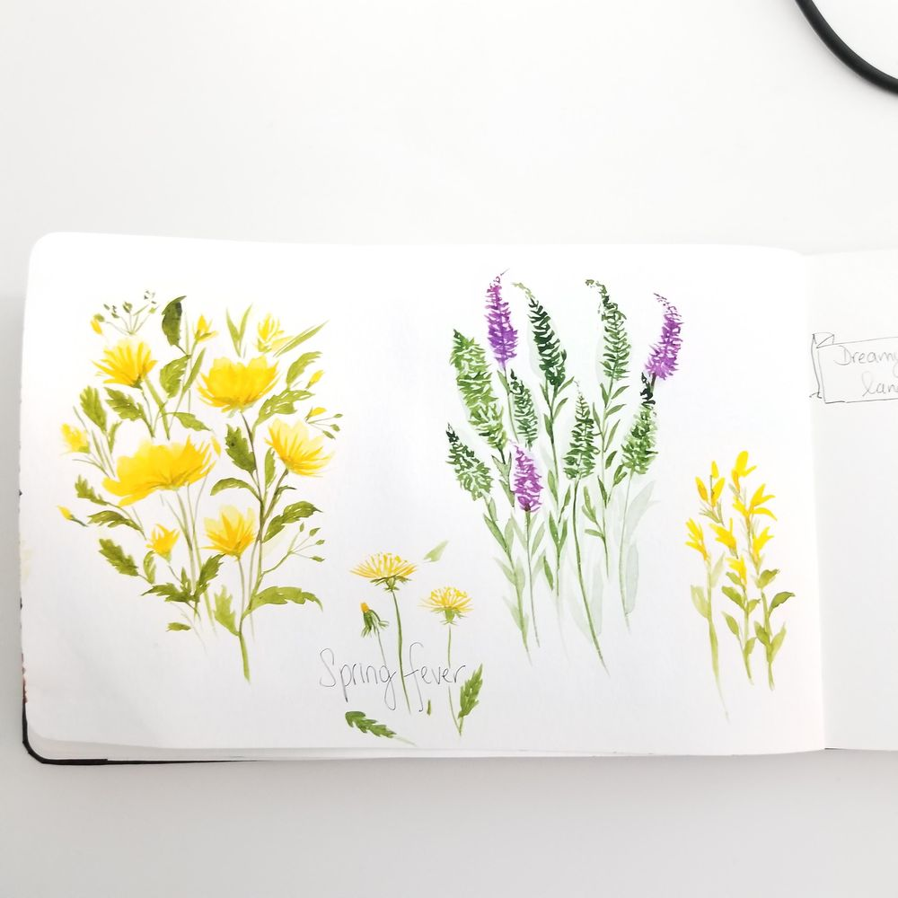 Spring Wildflowers - image 5 - student project