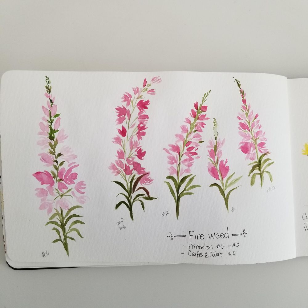 Spring Wildflowers - image 3 - student project