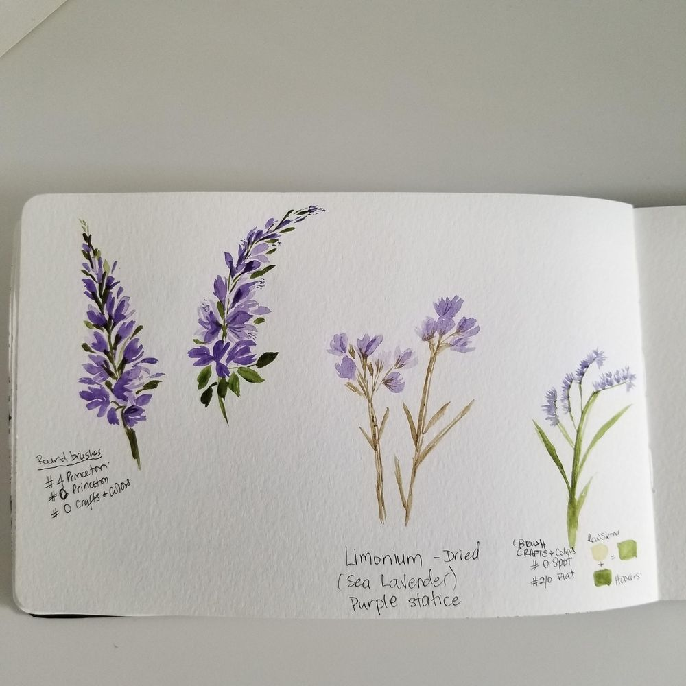 Spring Wildflowers - image 2 - student project