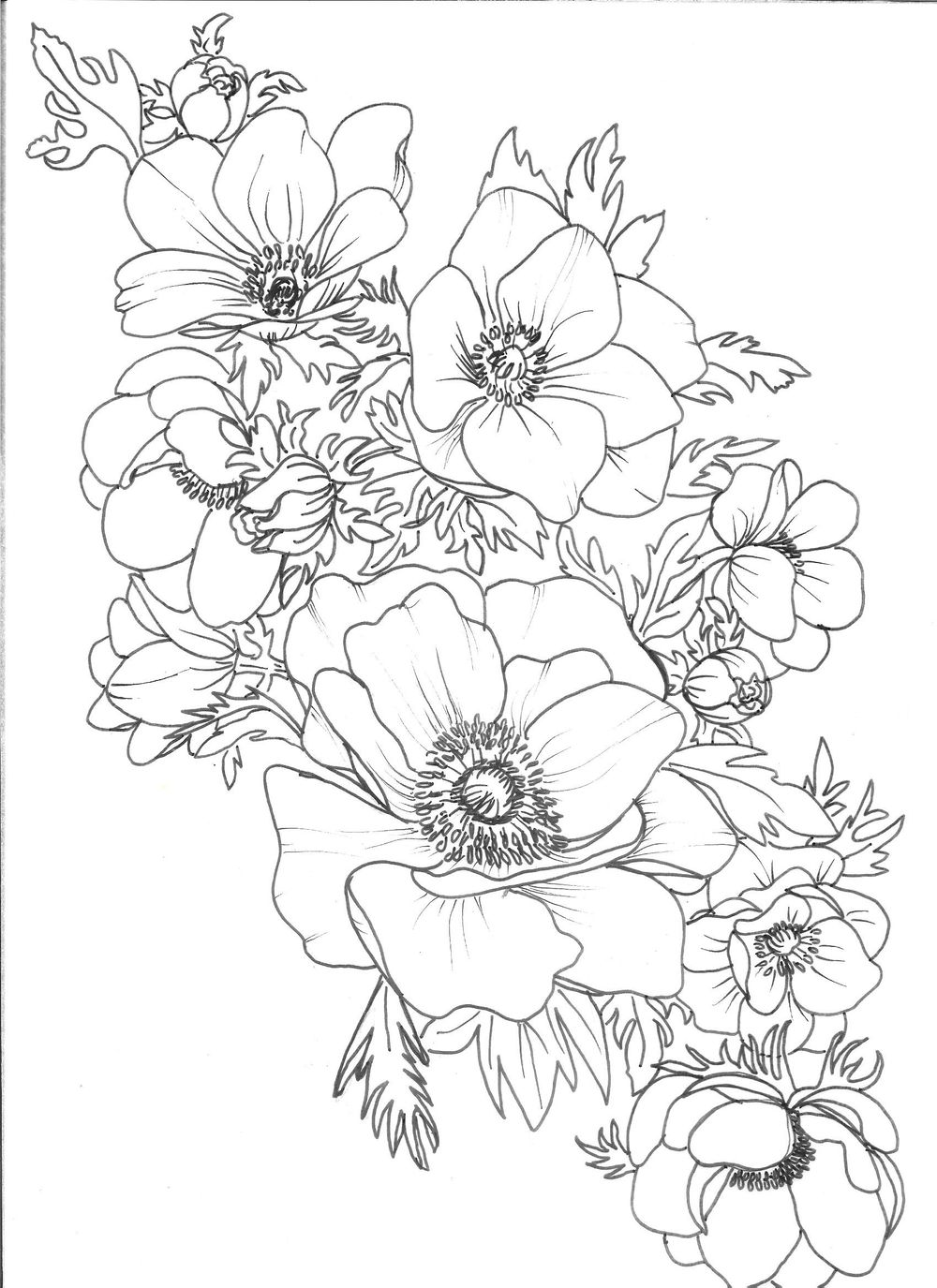 Anemone Wedding Suite Template - image 2 - student project