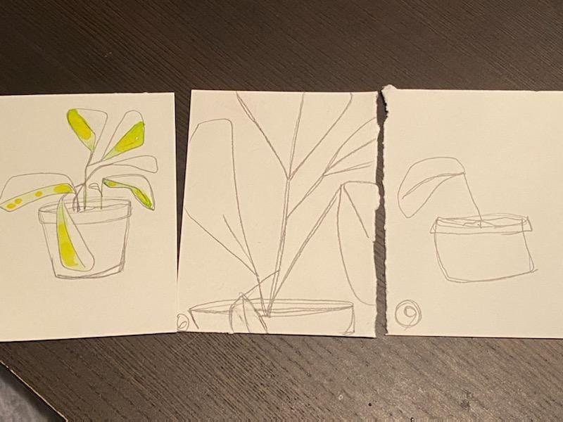 Little Plant Pots - image 2 - student project