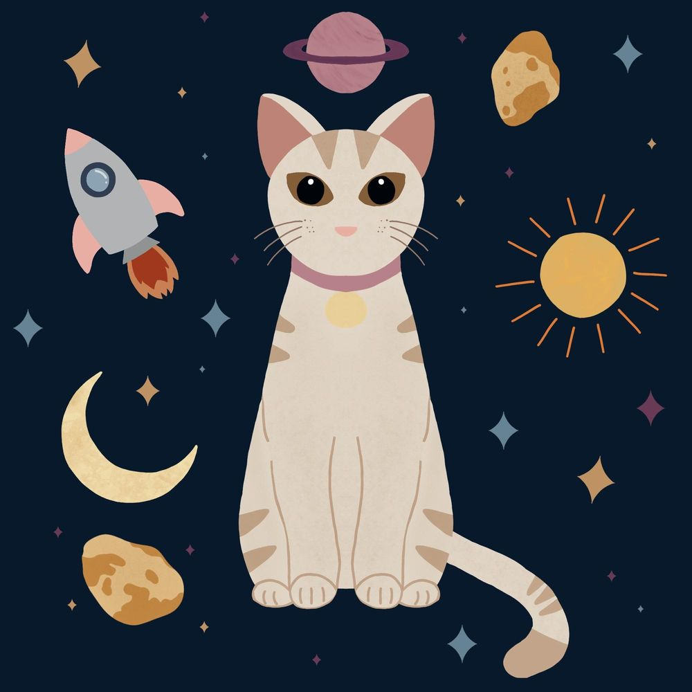 Meow - image 1 - student project