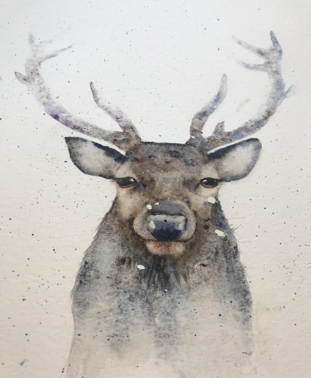 Post Christmas Rudolph - image 1 - student project