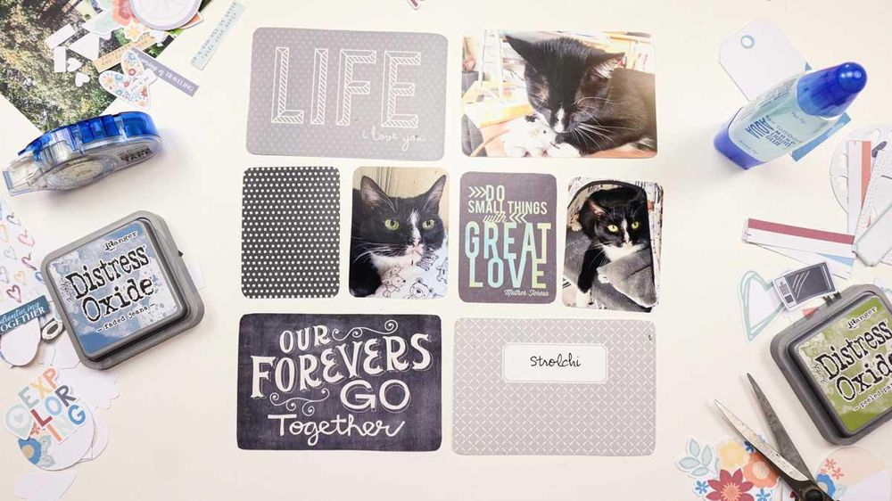 Project Life Cards with a Digital Scrapbooking Kit - image 1 - student project