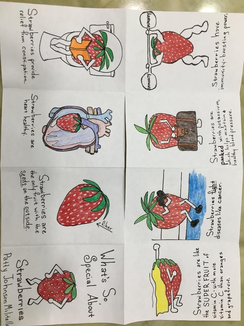 What's So Special About Strawberries - image 1 - student project