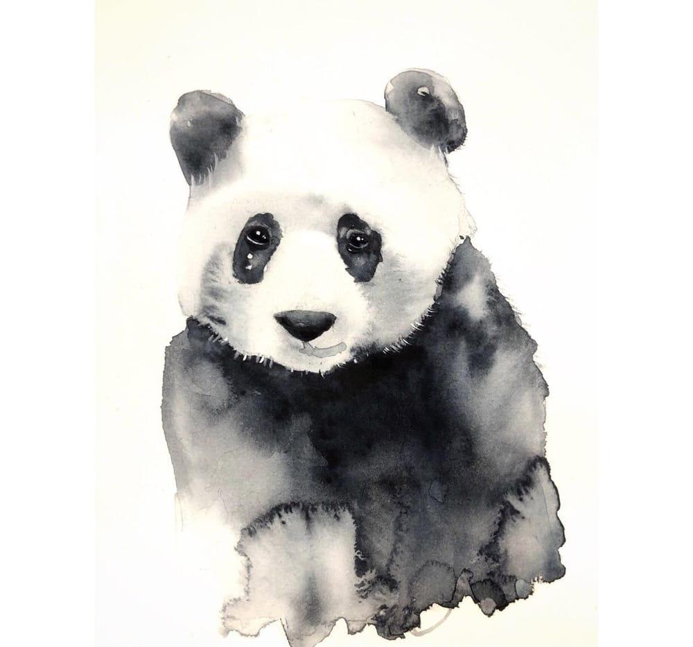 Panda - image 1 - student project