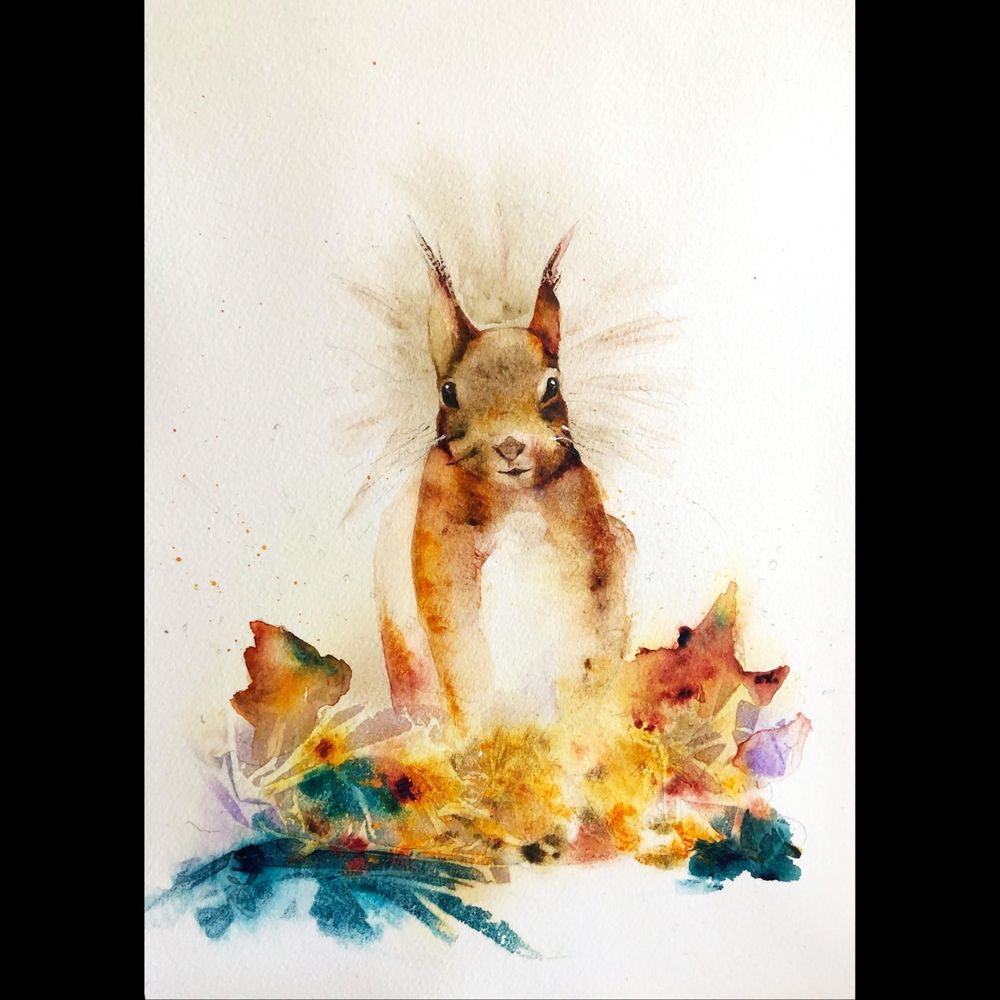 Sidney the Red Squirrel - image 1 - student project