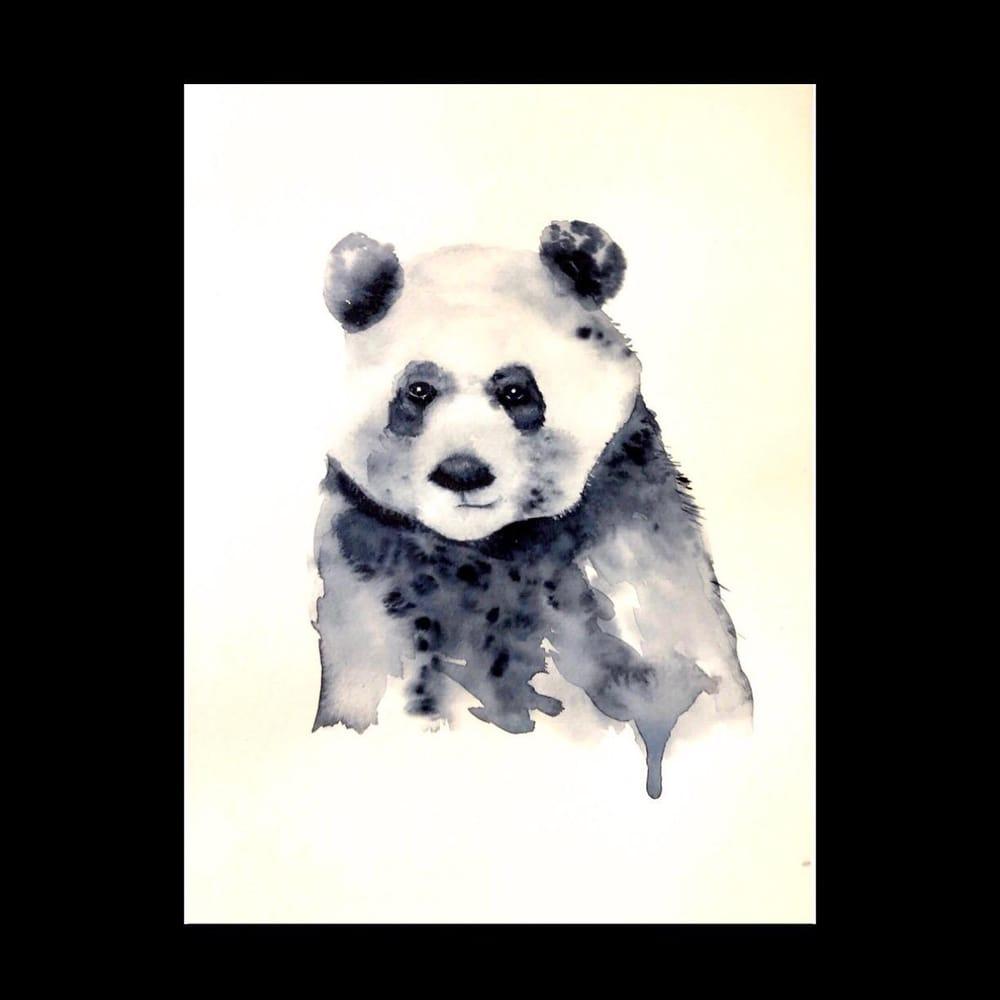 Panda - image 2 - student project