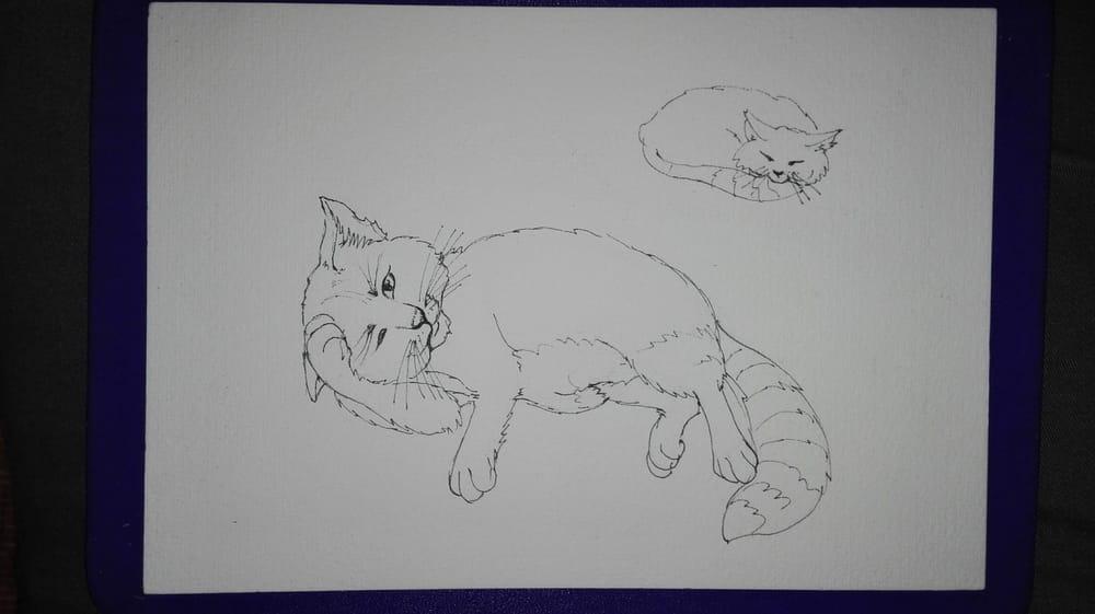 Danila - The greatest tomcat - image 1 - student project