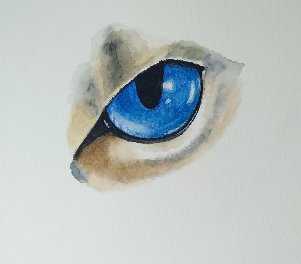 Eyes - image 2 - student project