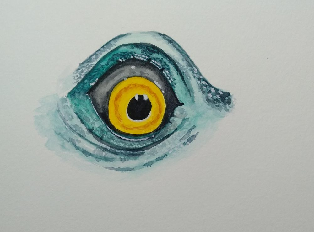 Eyes - image 4 - student project