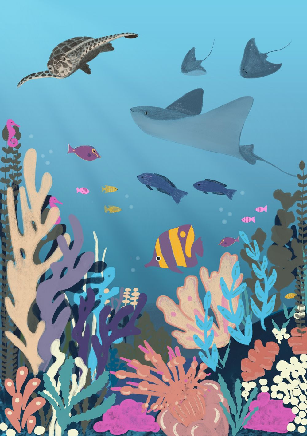 Sea Life - image 1 - student project