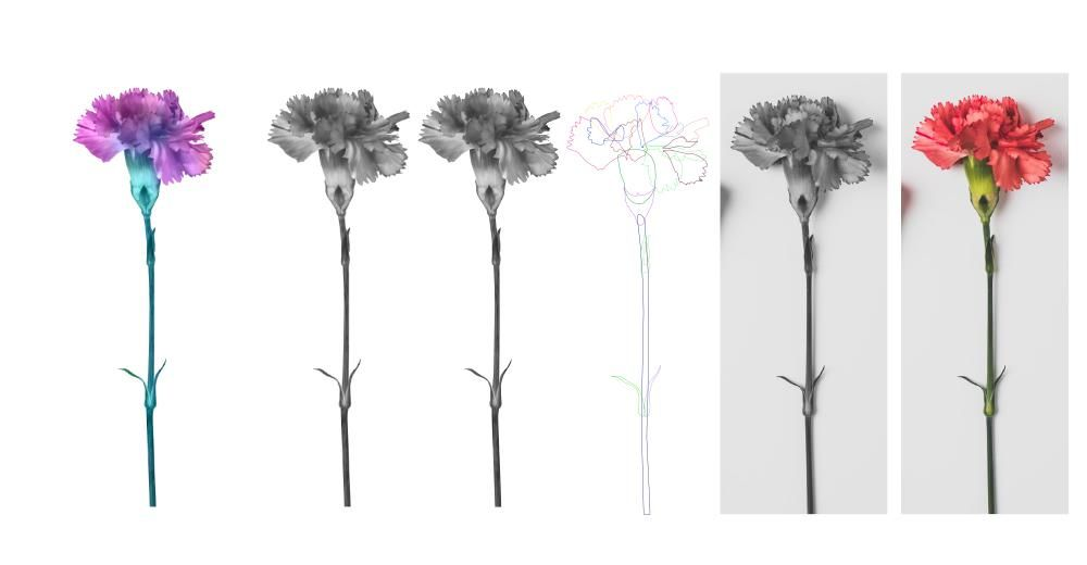 Affinity flowers - image 1 - student project
