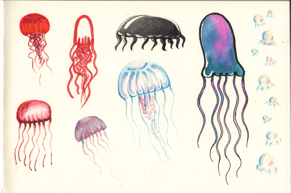 Jellyfish in different styles - image 2 - student project