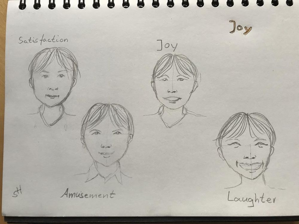 Facial Expressions - image 2 - student project