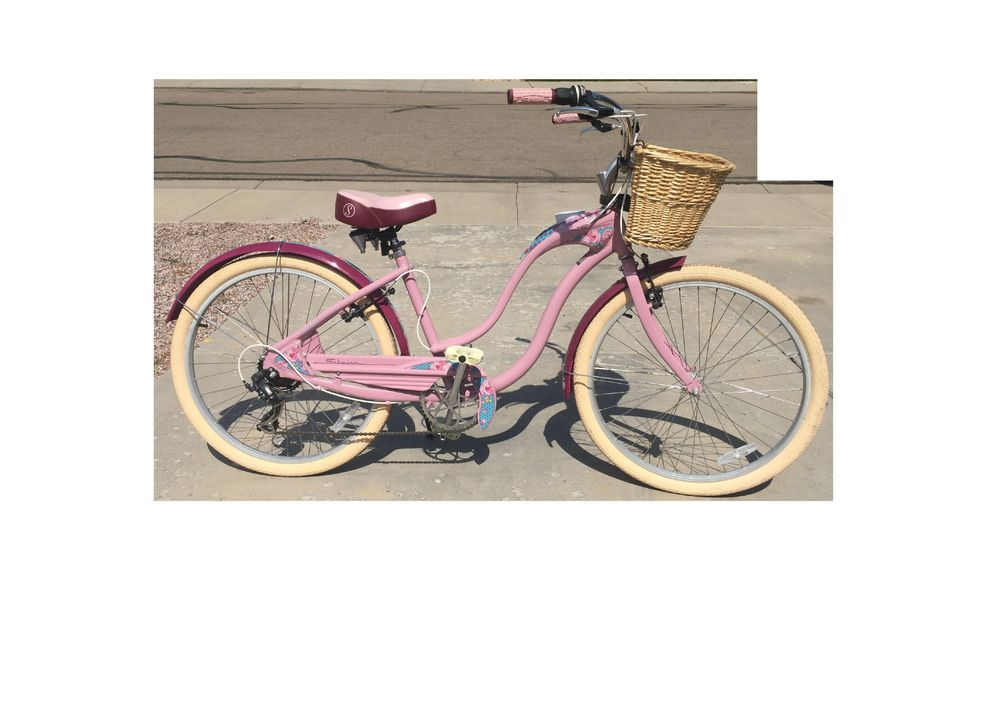 Pink Cruiser - image 2 - student project