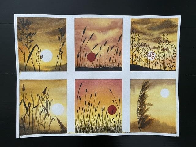 Sunset wild plants - G. Chandramohan - image 1 - student project