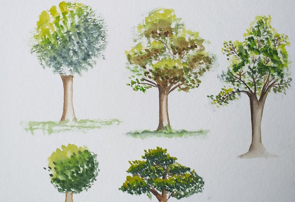 Trees - image 2 - student project