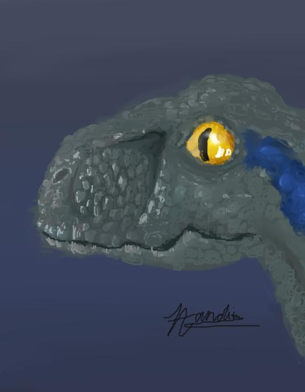 velociraptor - image 1 - student project