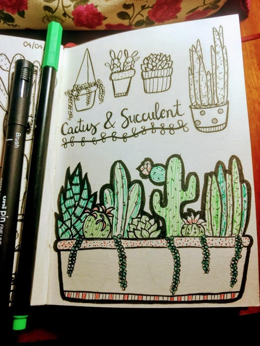 Line Drawing: Cactus & Succulent - image 2 - student project
