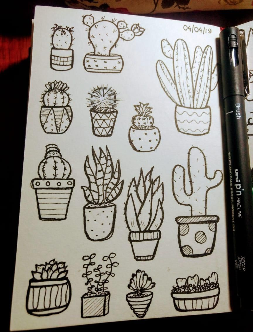 Line Drawing: Cactus & Succulent - image 1 - student project