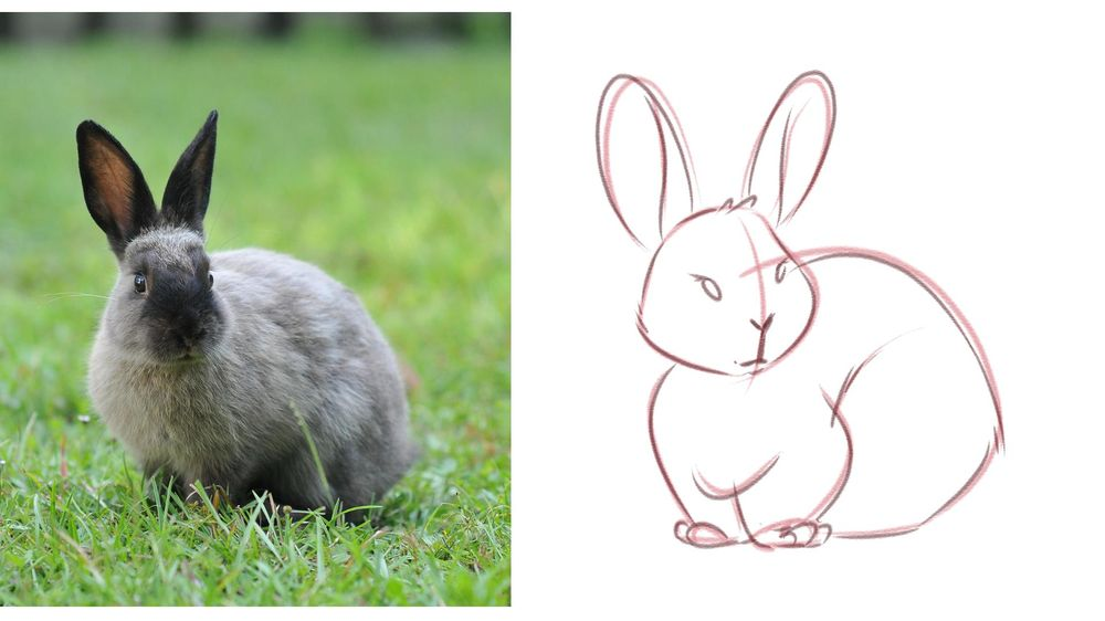 My Cute Bunny! - image 3 - student project
