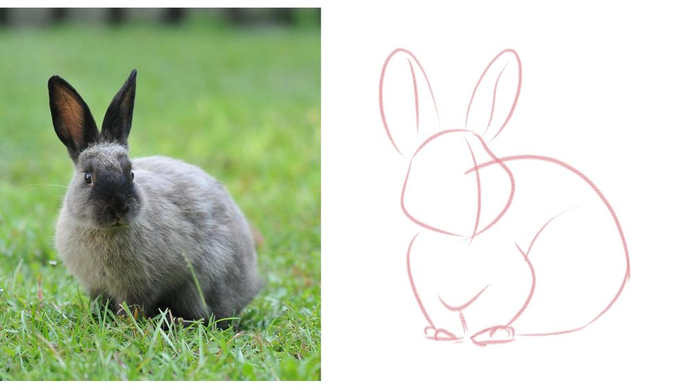 My Cute Bunny! - image 2 - student project