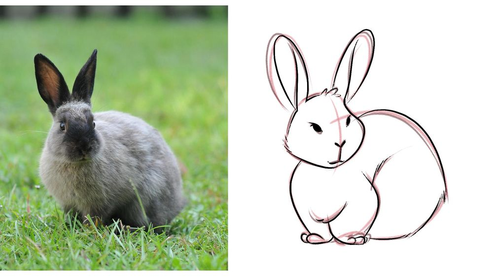 My Cute Bunny! - image 4 - student project