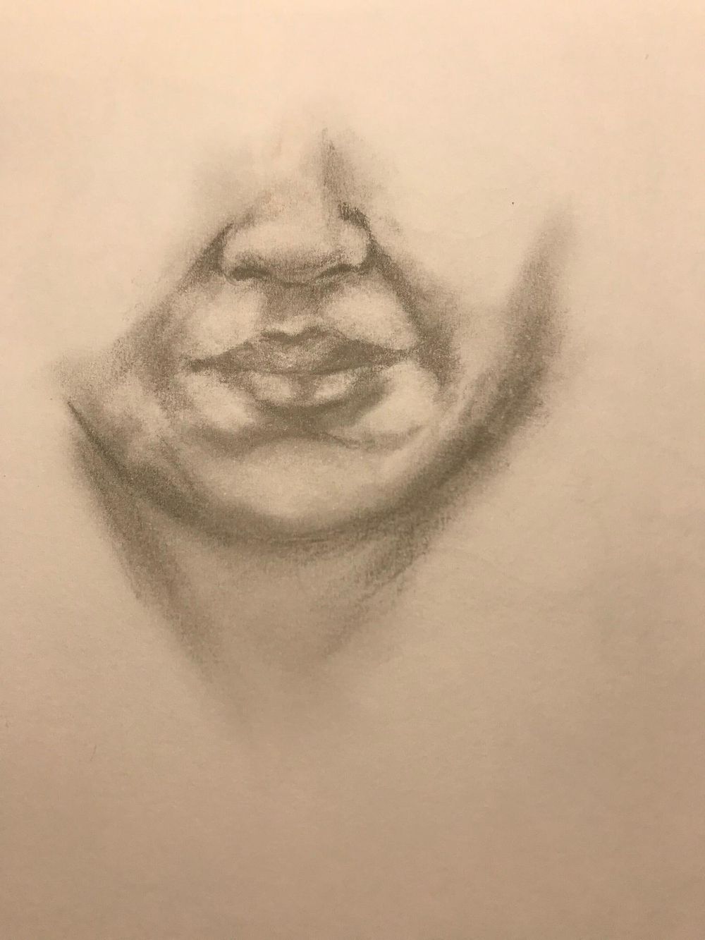 Portraiture Drawing - image 3 - student project