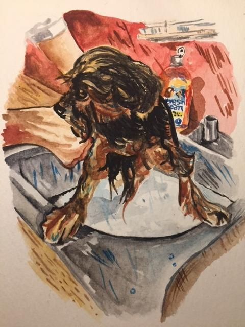 Watercolor Sketching Your Life Workshop - image 16 - student project