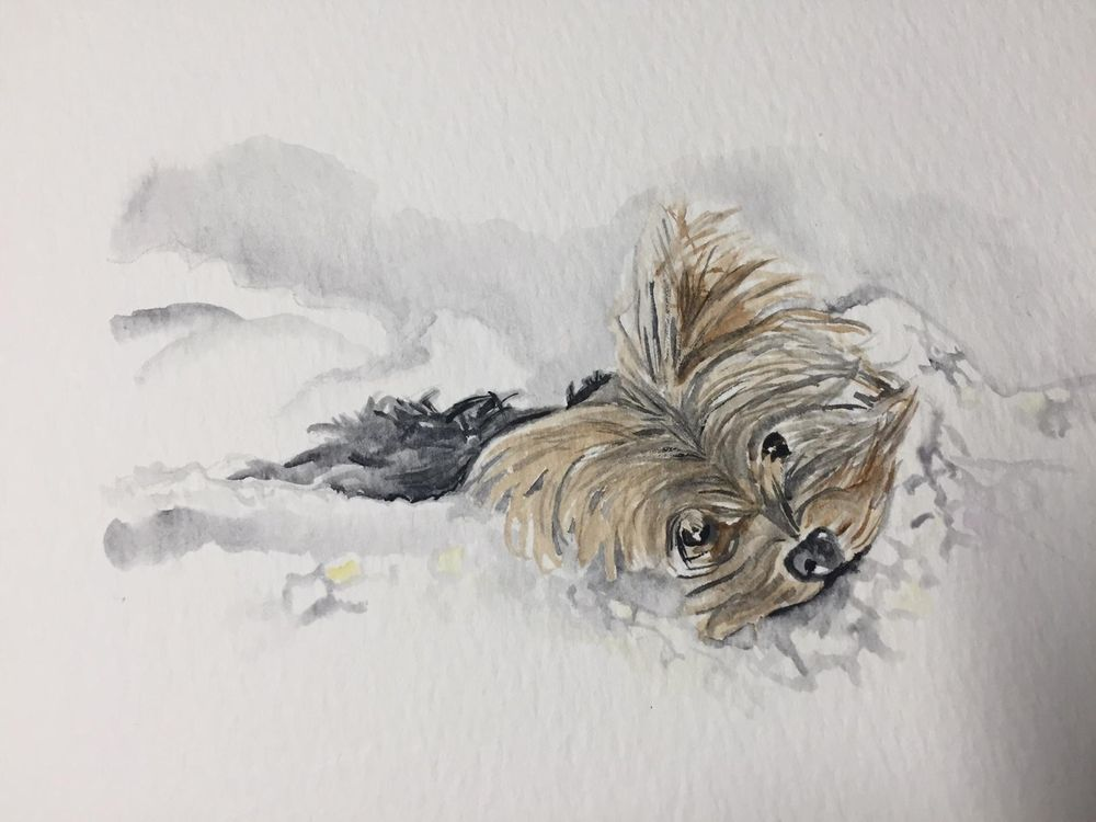Watercolor Sketching Your Life Workshop - image 13 - student project