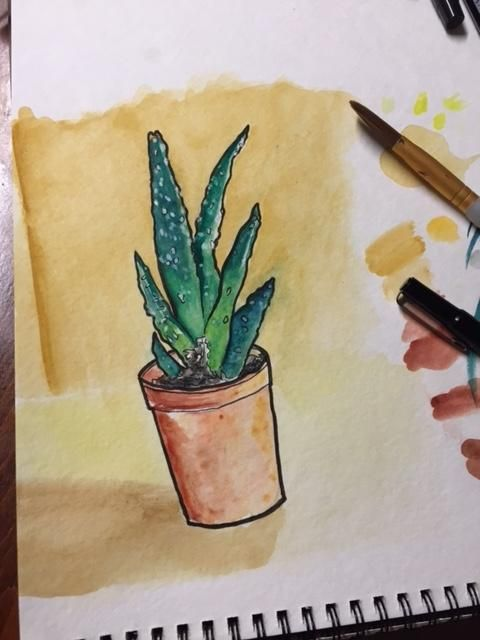 Watercolor Sketching Your Life Workshop - image 21 - student project