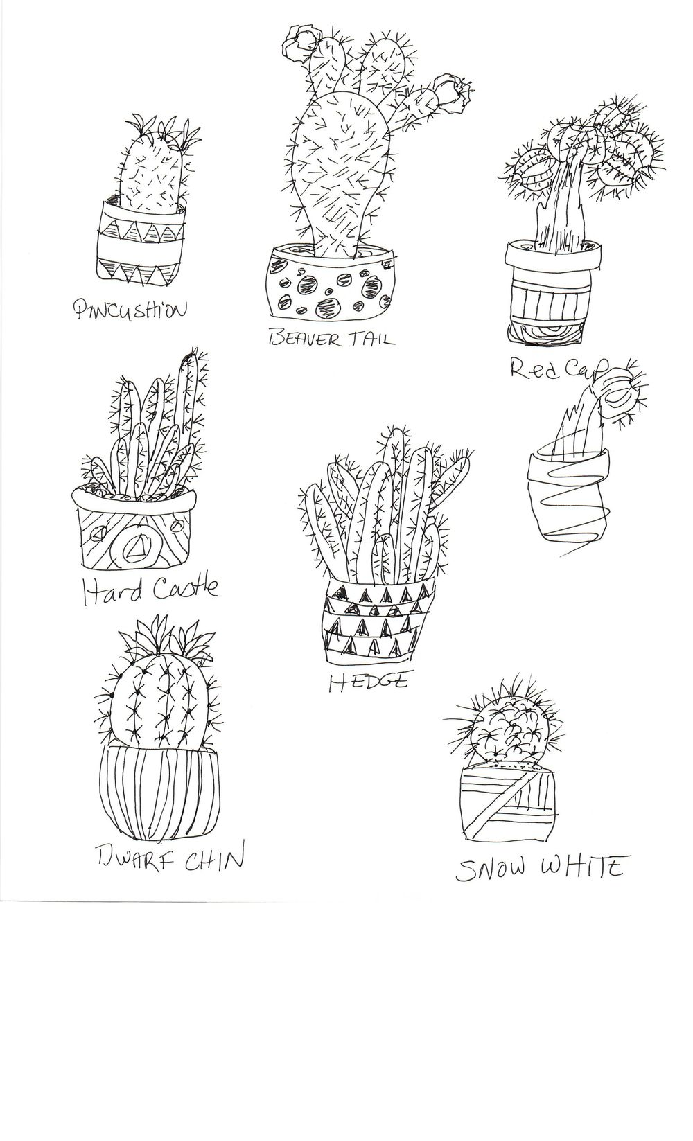 Practice Practice Practice Cactus cactus cactus. - image 1 - student project