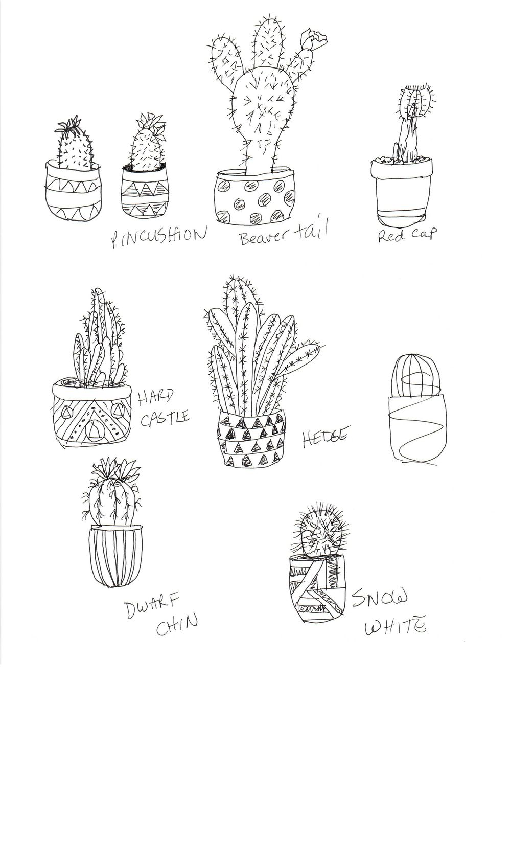 Practice Practice Practice Cactus cactus cactus. - image 4 - student project
