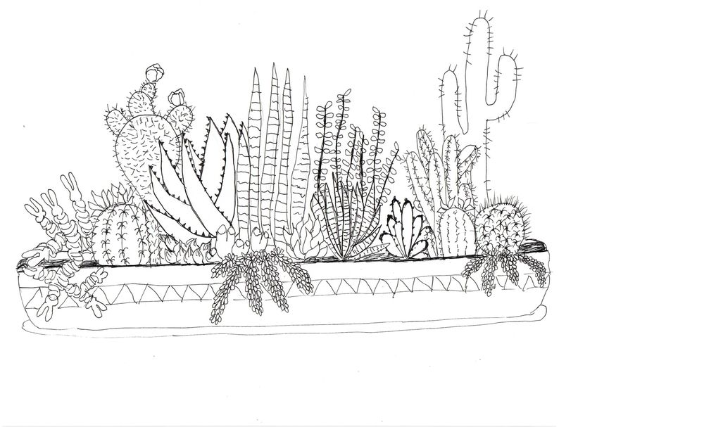 Practice Practice Practice Cactus cactus cactus. - image 10 - student project