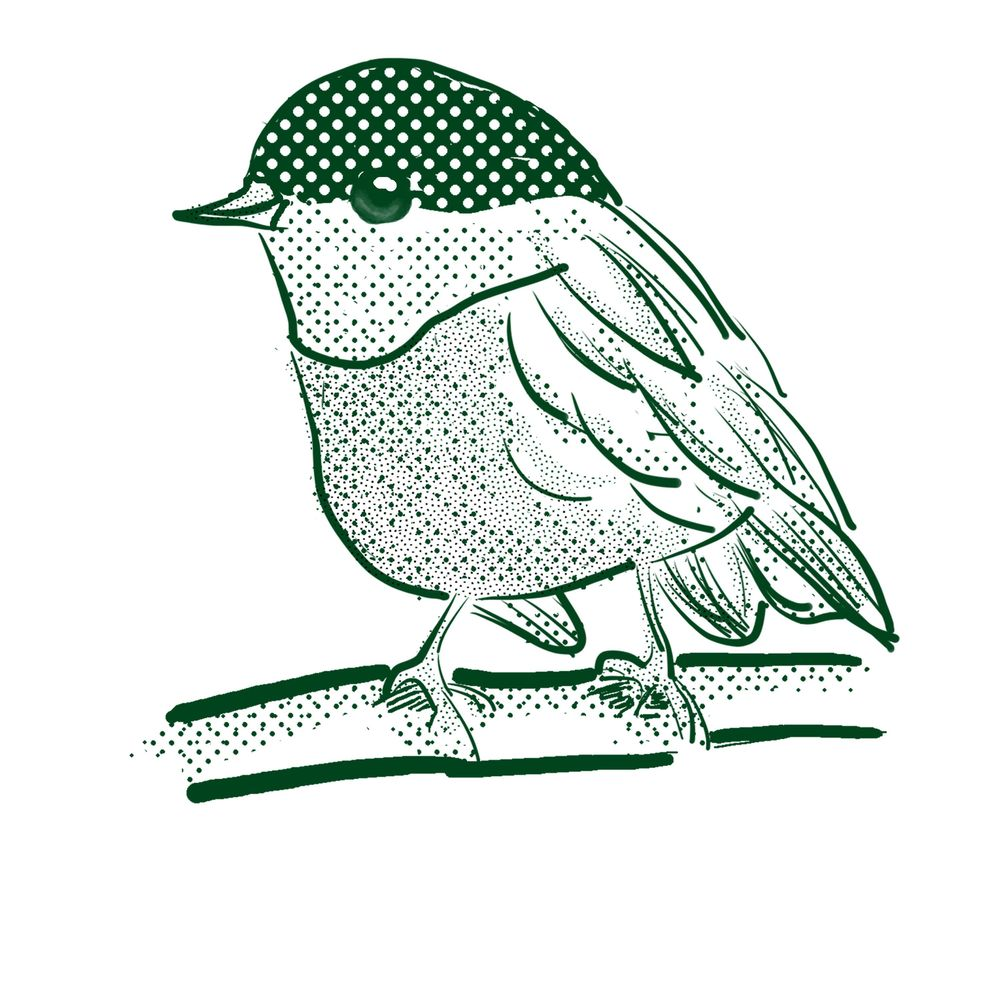 Bird lineart - image 2 - student project