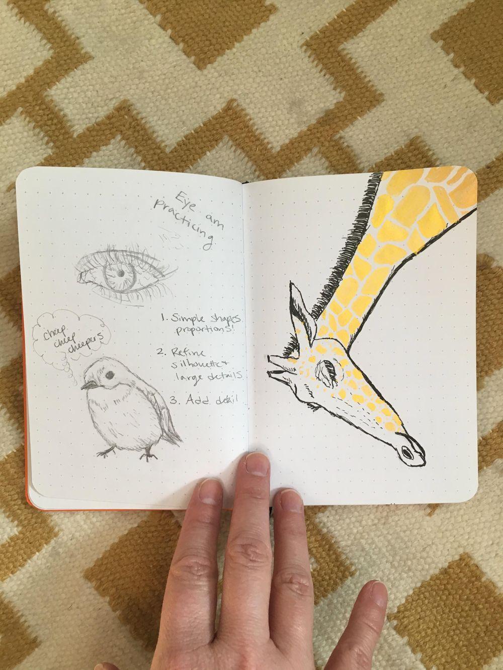 Practice + Bird + Giraffe + Flamingo - image 2 - student project