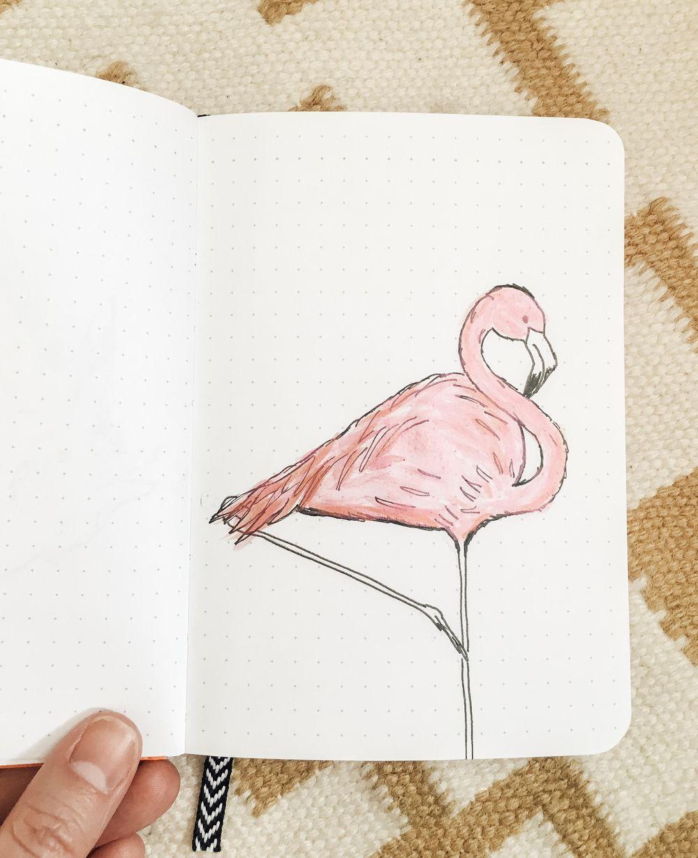Practice + Bird + Giraffe + Flamingo - image 1 - student project