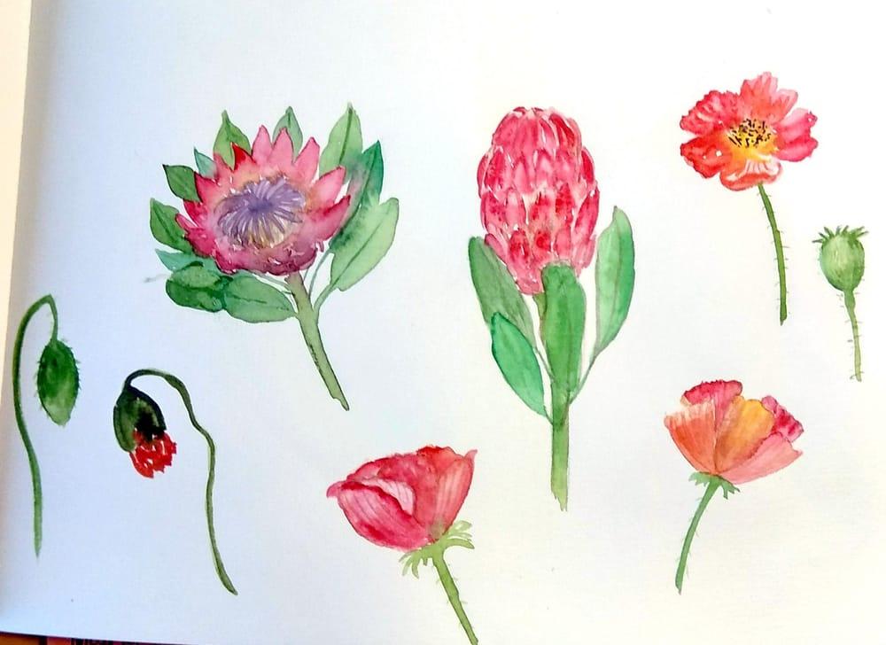 Poppy's pattern - image 1 - student project