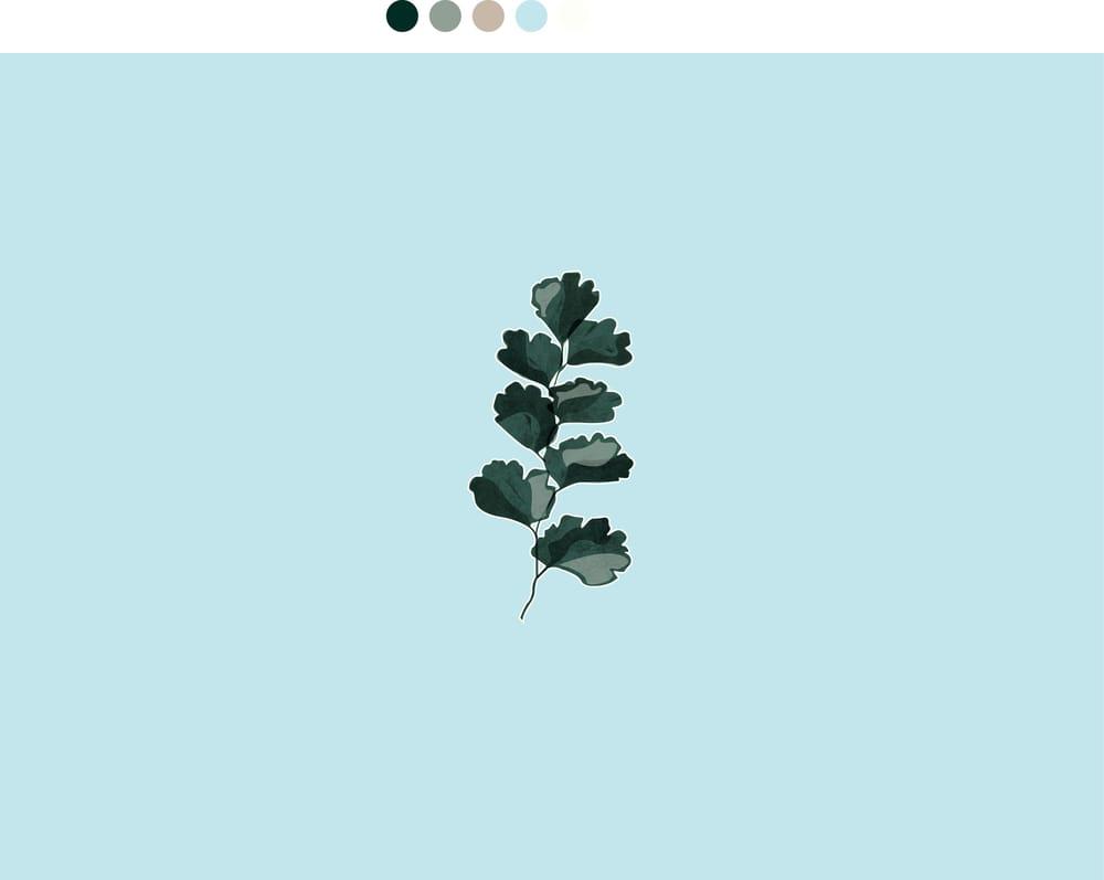 Fern Leaf - image 1 - student project