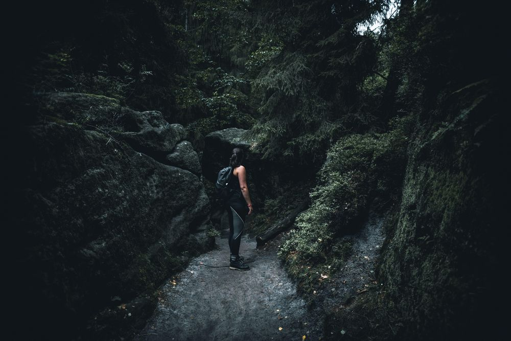 Hike Path - image 3 - student project