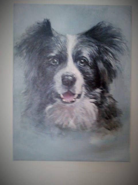 Pet Portrait - image 1 - student project