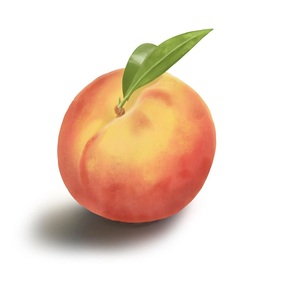Peach - image 1 - student project