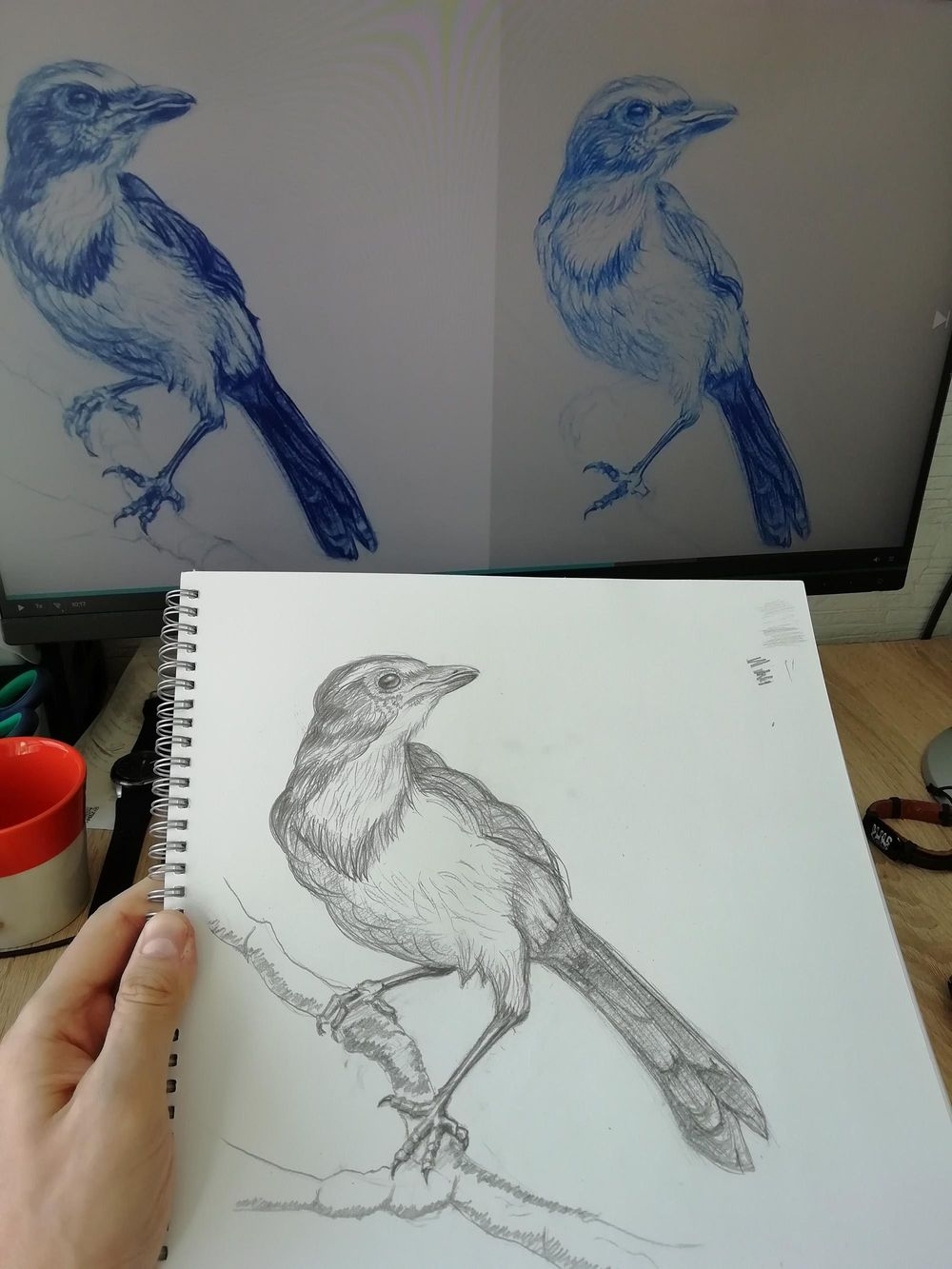 Week 1 practice result - image 2 - student project