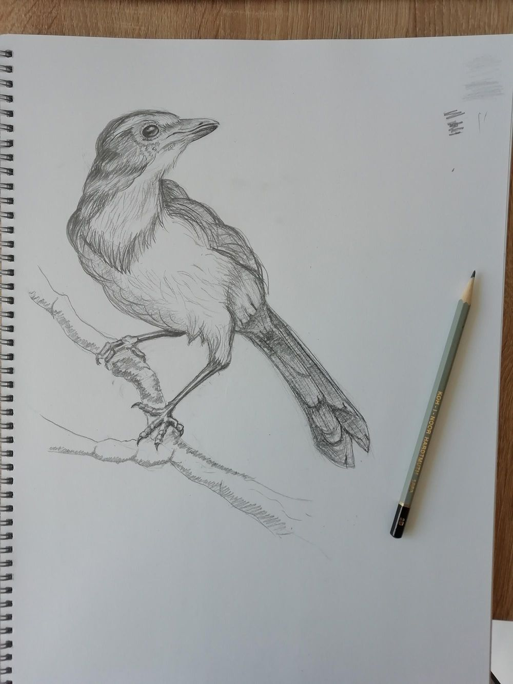 Week 1 practice result - image 1 - student project