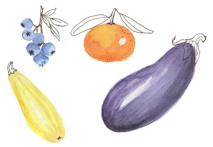Fruit, Veggies, and Flowers - image 2 - student project